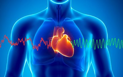 Cohérence cardiaque, relier cœur et cerveau