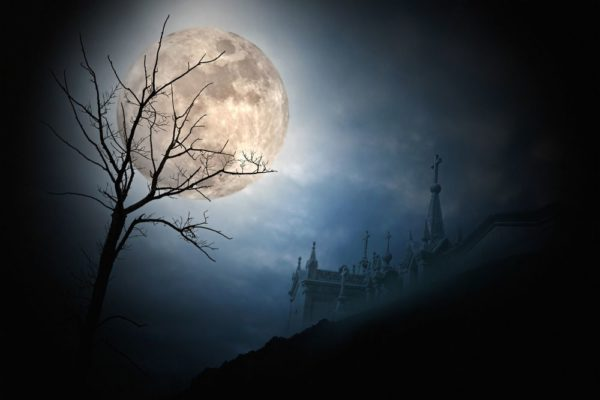 Méditations pour la Nouvelle Lune du Vendredi 13 Juillet