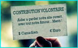 Contribution Volontaire