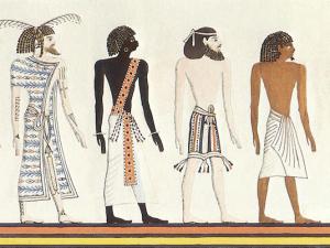 Les Sept Races-Racines