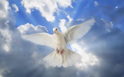 La paix en Vous
