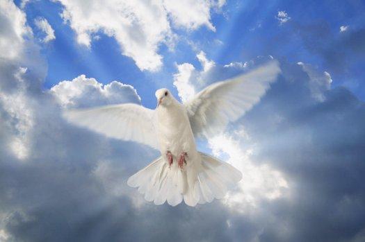 Être Multidimensionnel arborant le drapeau de la Paix Universelle