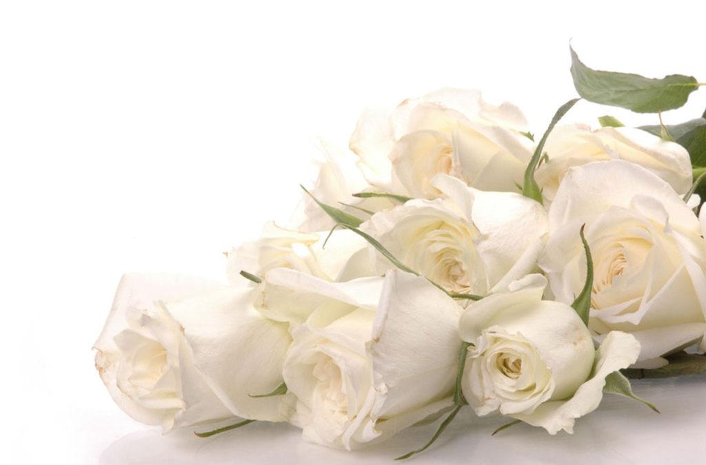 Si vos vies sont comme des roses, l'âme est le rosier