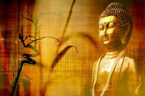 Ce que Bouddha a dit au sujet de la divination et du destin
