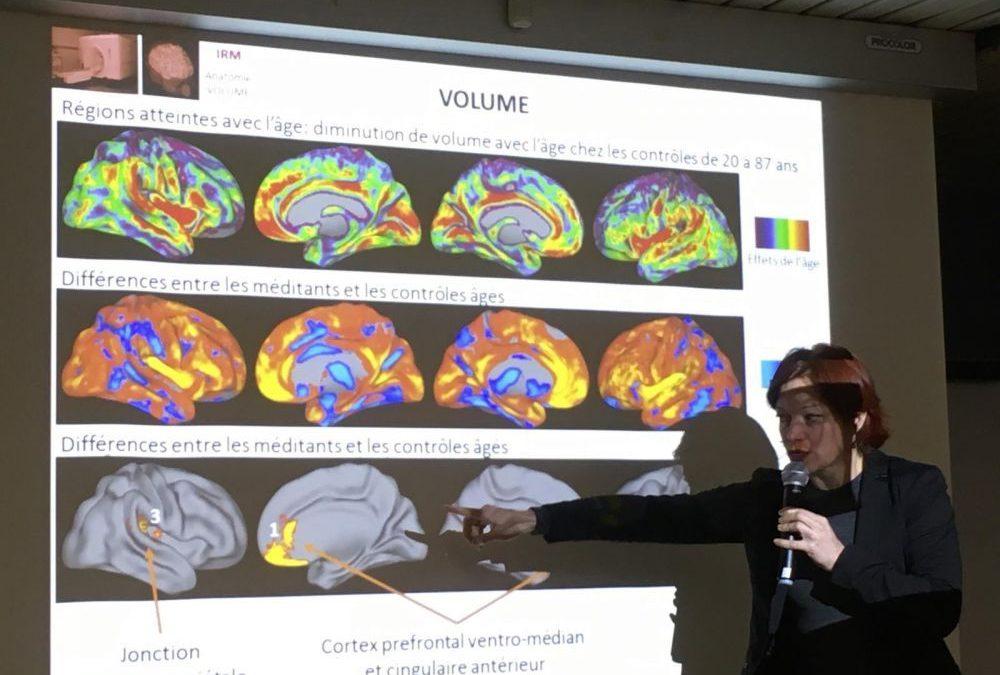 La méditation protègerait le cerveau du vieillissement