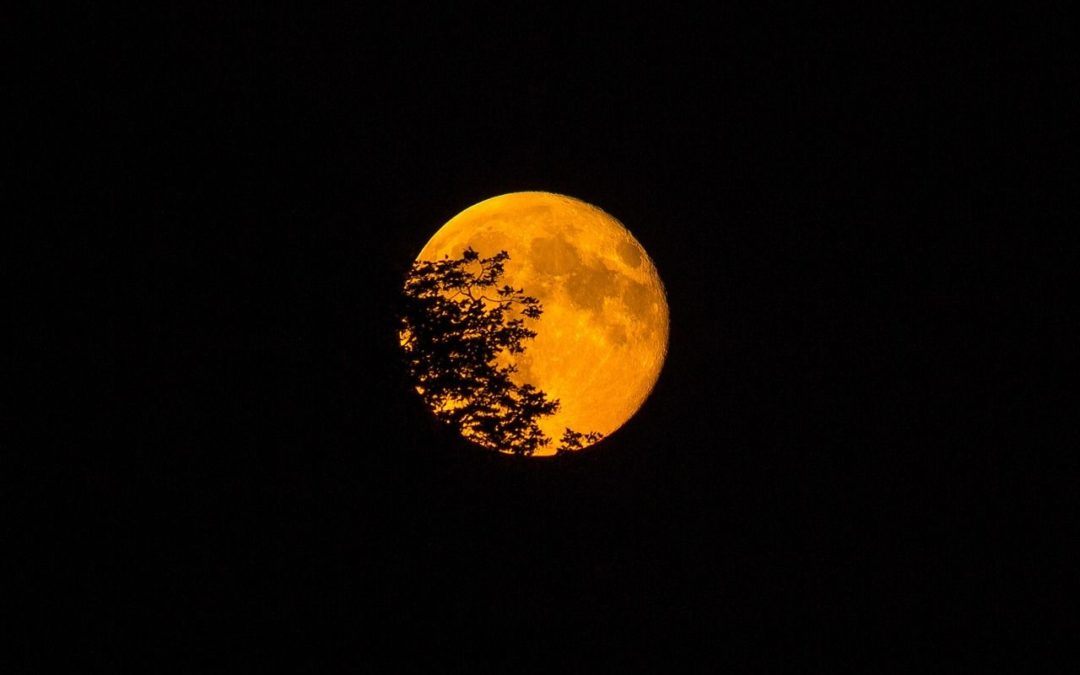 La super Lune bleue de sang & Éclipse lunaire du 31 janvier 2018 : Une sensibilité et une lucidité plus intenses !