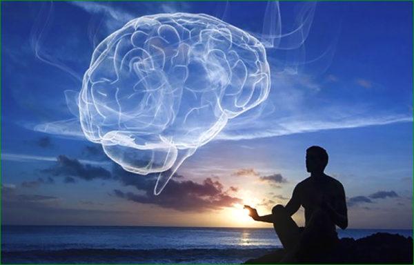 Silence et cerveau