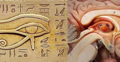 L'oeil d'Horus (série vidéos en français)