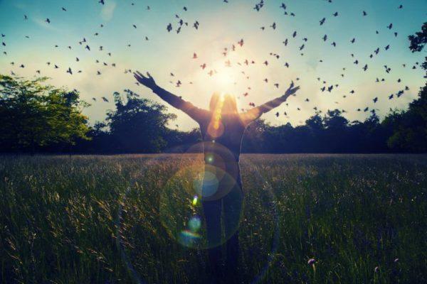 Quelle force nous pousse a avoir toujours le besoin de connaitre pourquoi on est sur cette terre, vers quoi nous nous dirigeons,   Quelle est notre mission de vie….. ?