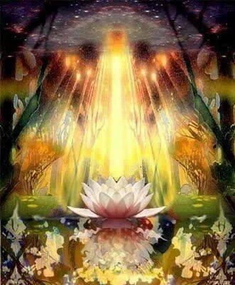 Les 12 chakras… 4ième CHAKRA  OR, chakra de la Rate