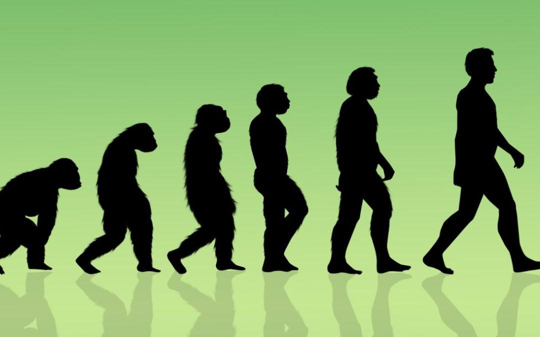 La dopamine pourrait être au cœur de l'évolution humaine