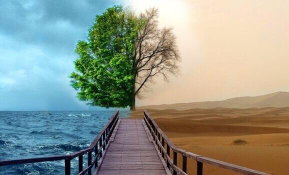 4 clés de la thérapie Gestalt pour traiter la dépression