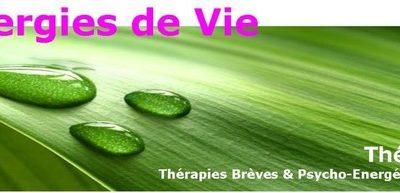 Thérapies brèves et Psycho-Énergétique clinique