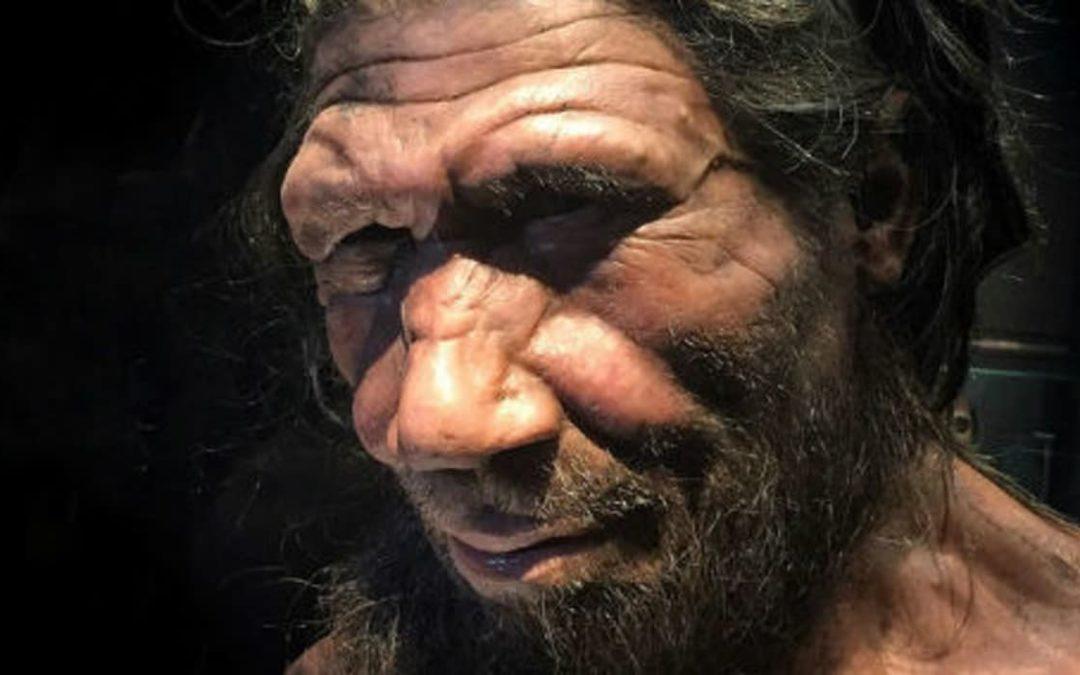 L'homme de Néandertal faisait preuve de compassion
