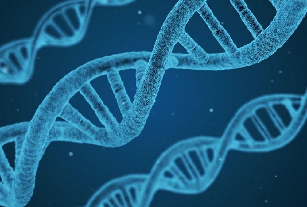 Déverrouillez votre ADN