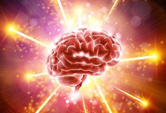 Pourquoi le cerveau vieillit ? La réponse se trouve dans nos gènes