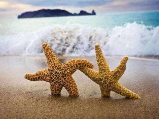 3 façons de pratiquer le non-attachement dans nos relations