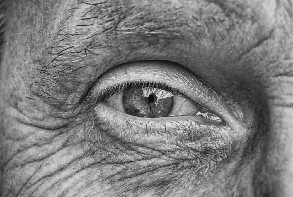 Une nouvelle méthode non invasive pour dépister la maladie d'Alzheimer dans la rétine
