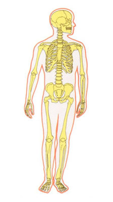 Le corps comme point d'entrée dans l'hologramme de la conscience