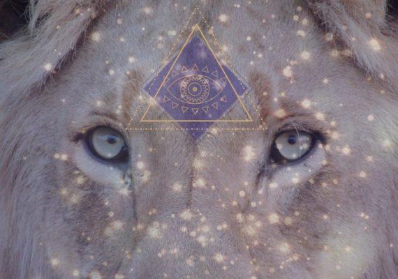 8/8 La Porte Du Lion 2019 : L'incarnation Complète De L'âme Alors Que Nous Entrons Dans Le Cycle Créatif De 2019/20
