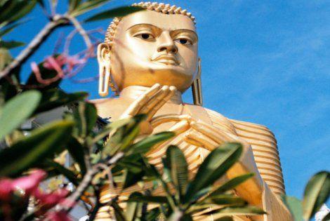 Le Sri Lanka, pour vous célébrer et prendre soin de vous !