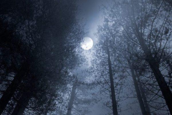 Découvrez comment la Lune des moissons agira sur vous cette année selon votre signe astrologique