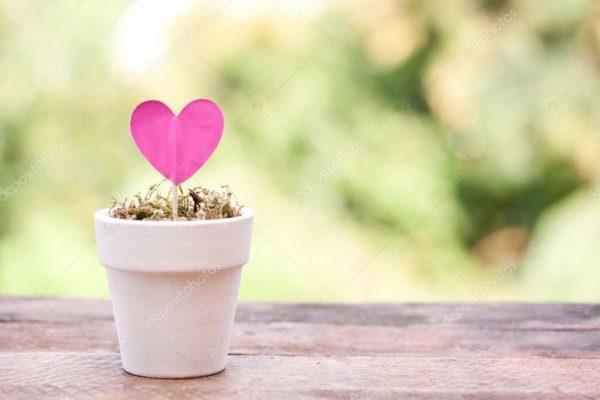 Attention! Le mois de l'Amour est en pleine mise à jour cristalline.