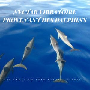 Nectar vibratoire provenant des dauphins… un outil d'éclosion…