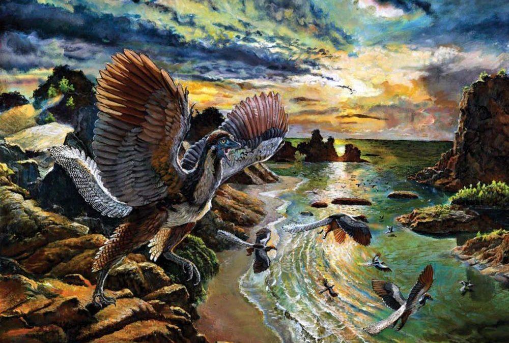 Archaeopteryx albersdoerferi : découverte du chaînon manquant entre dinosaures et oiseaux