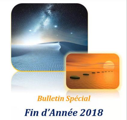 Le Bulletin Spécial Fin d'Année 2018 !