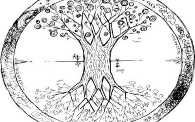 Signes du zodiaque : voici votre arbre celtique protecteur en fonction de l'astrologie