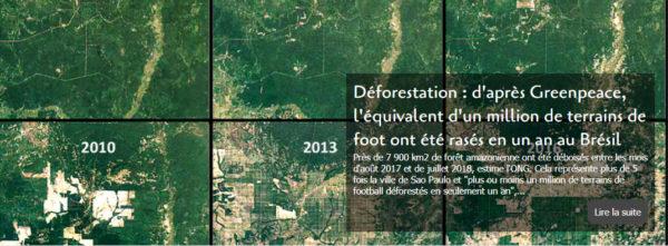 Déforestation : d'après Greenpeace, l'équivalent d'un million de terrains de foot ont été rasés en un an au Brésil