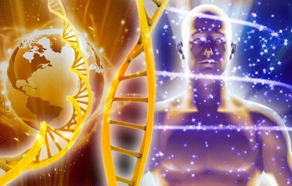 Vous Portez, Dans la Forme, l'ADN Divin