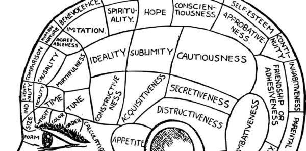 Le cerveau perçoit-il (vraiment) la réalité?