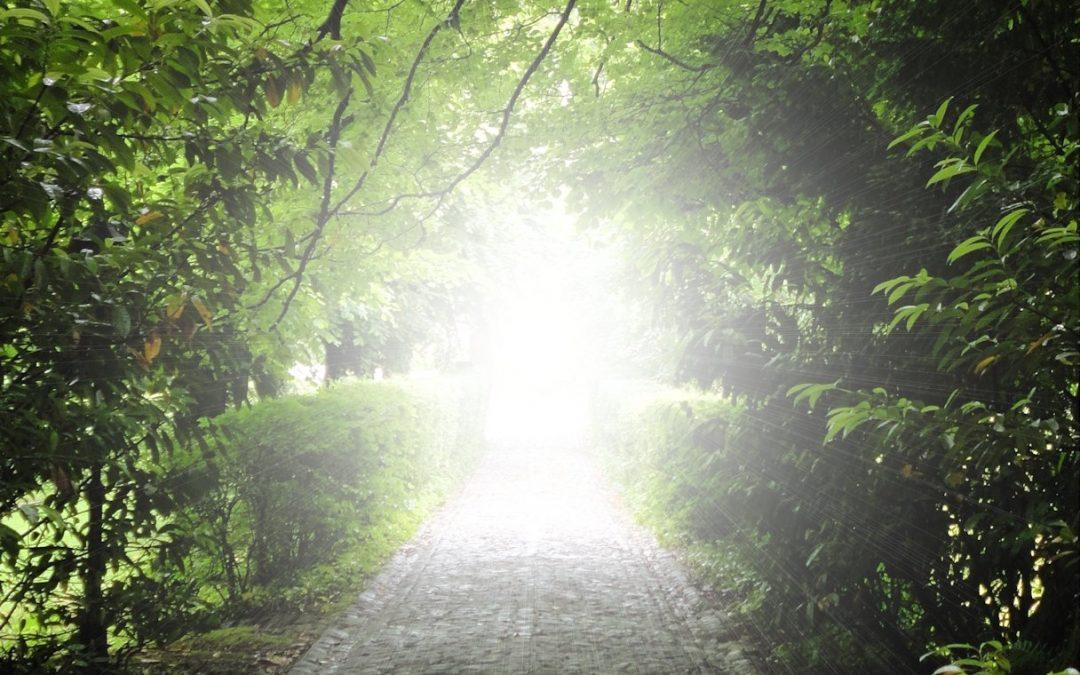 Je vois de plus en plus de lumière