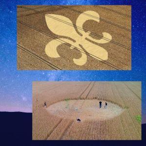 Agroglyphes, Cercles de Culture et Crop Circles au KébeK?
