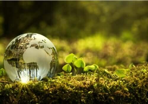 Contribuer à la protection de l'environnement