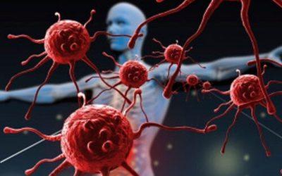Les émotions et le système immunitaire
