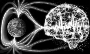 Des scientifiques trouvent des preuves que votre cerveau peut détecter le champ magnétique terrestre