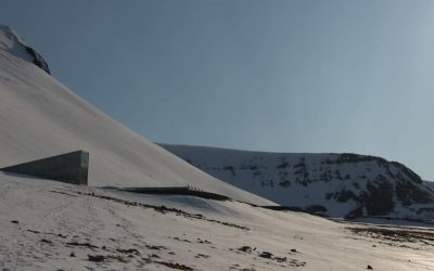 L'arche de Noé végétale s'étoffe en plein cœur de l'Arctique