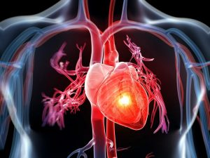 Confinement : faîtes attention à votre cœur !