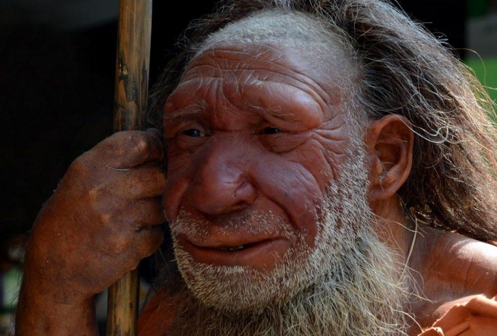 Un gène néandertalien serait lié à une sensibilité accrue à la douleur chez l'Homme moderne