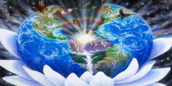 La Vie sur la Nouvelle Terre : Liberté de choix
